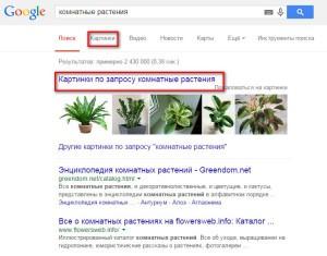 Поиск картинок в интернете